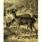 Лань - картина из сусального золота