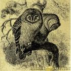 Совы - картина из золота с изображением Птиц