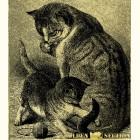 кошка с котёнком- картина из золота с изображением хищных кошек