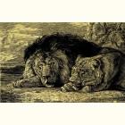 Золотая картина Лев И Львица