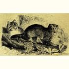 Картина из золота Бенгальские кошки