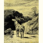 Олень - золотая картина с изображением оленей