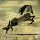 Золотая картина Конь