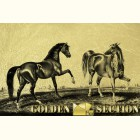 Золотая картина Пара Лошадей